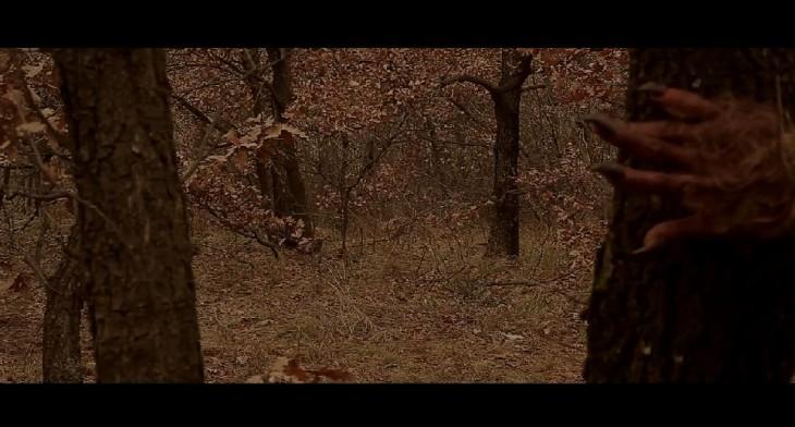 "Screenshot from ""Fionnualla"" book trailer"